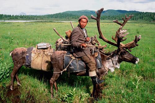 Tuva deer riding