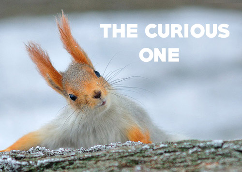 the curious one