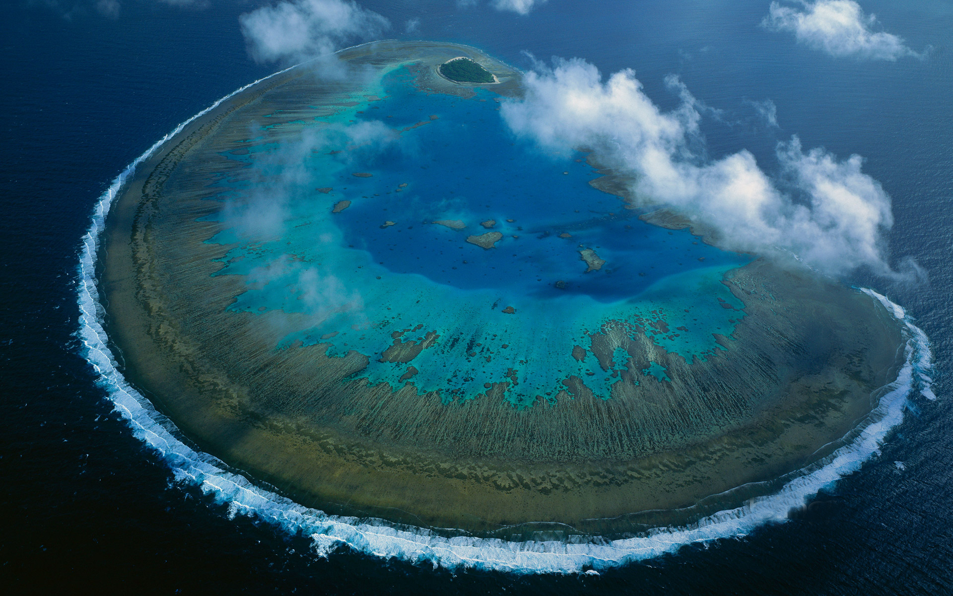 Lady Musgrave Island coral atoll in Capricorn-Bunker group, Grea