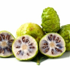 Noni Juice – Healthy Miracle of Nature