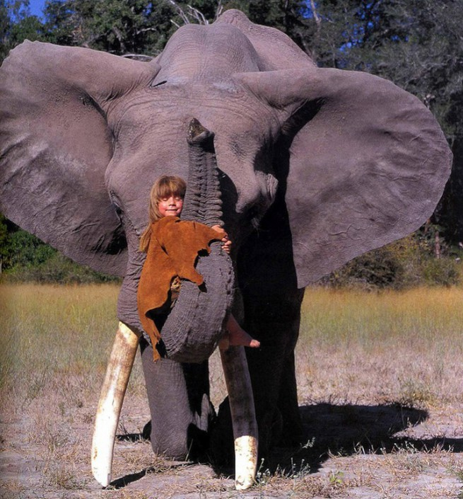 Tippi Degre playing with elephant
