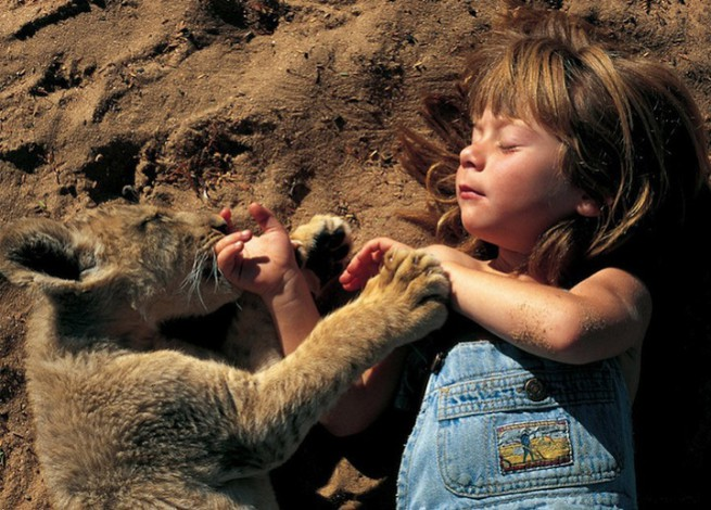 Tippi Degre playing with lion