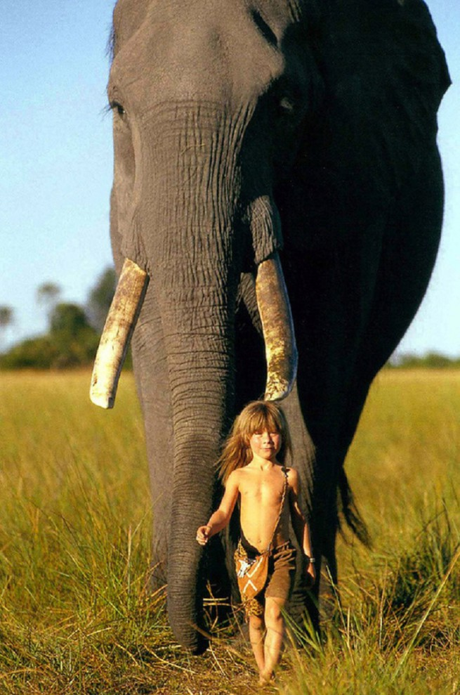 Tippi Degre with elephant