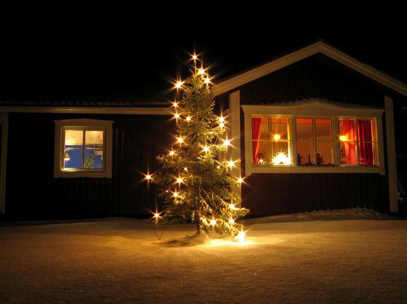 pin tree for christmas
