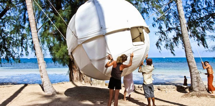 Cocoon tree dream tent
