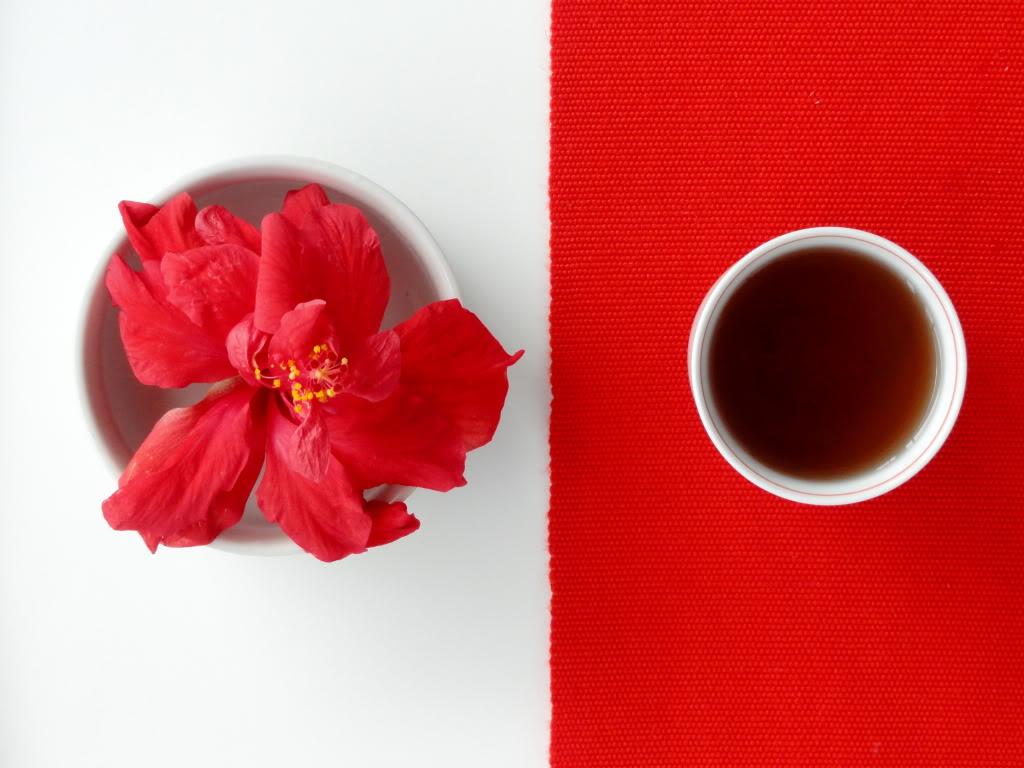 Hibiscus tea in cup