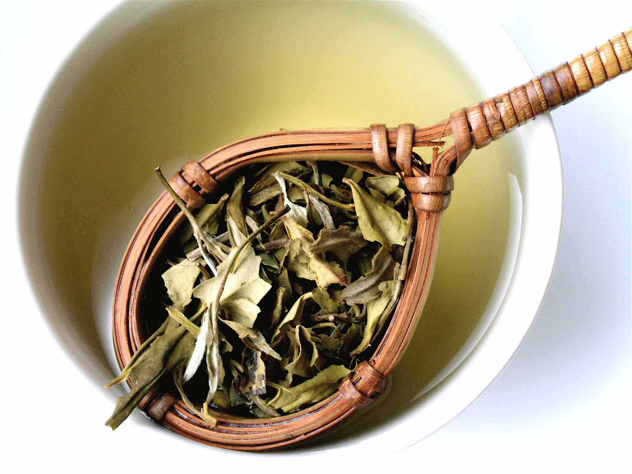White tea in a cup