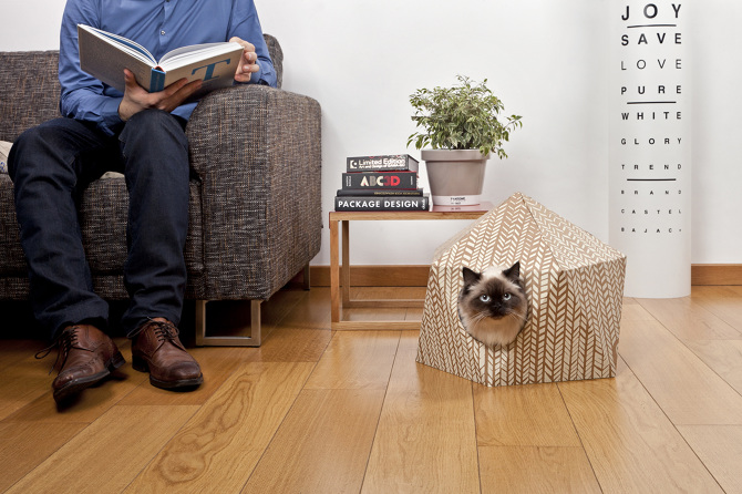 cube  Delphine Courier pet bed