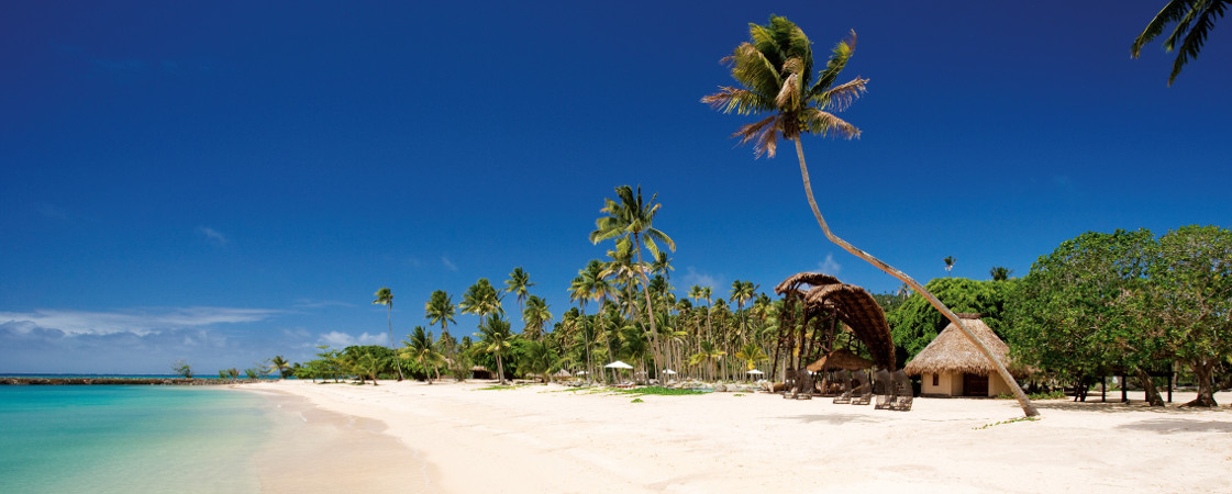 Fiji resorts beach with palms