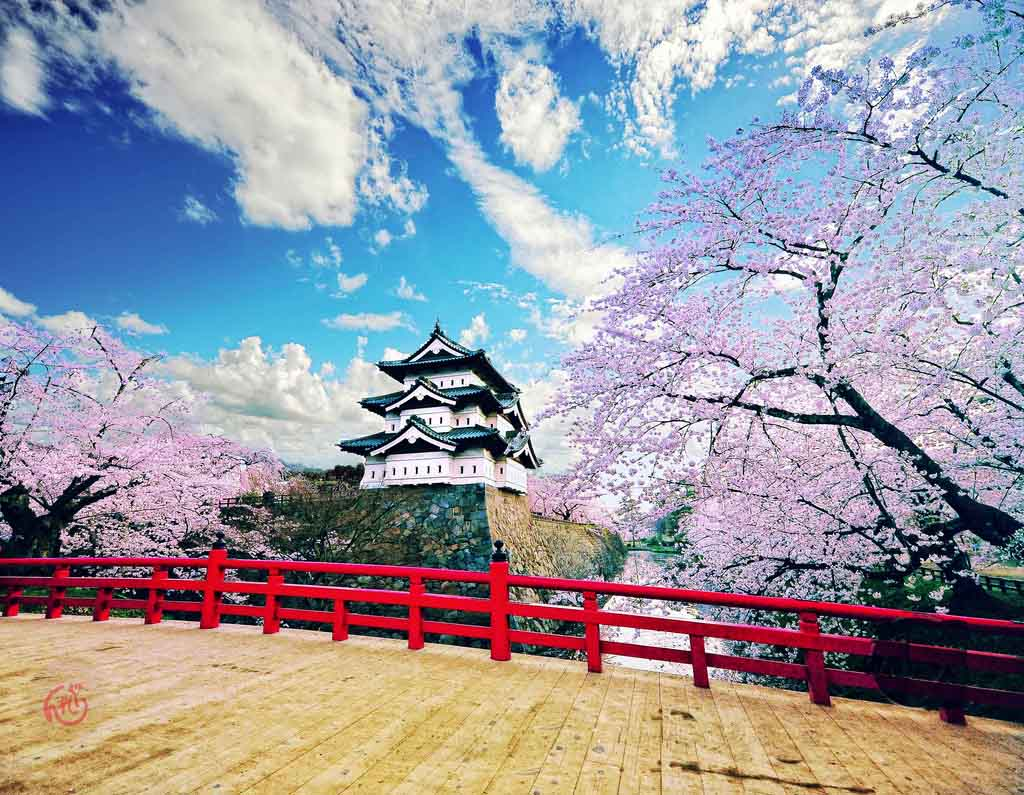 Hirosaki Castle bridge with cherry blossoms