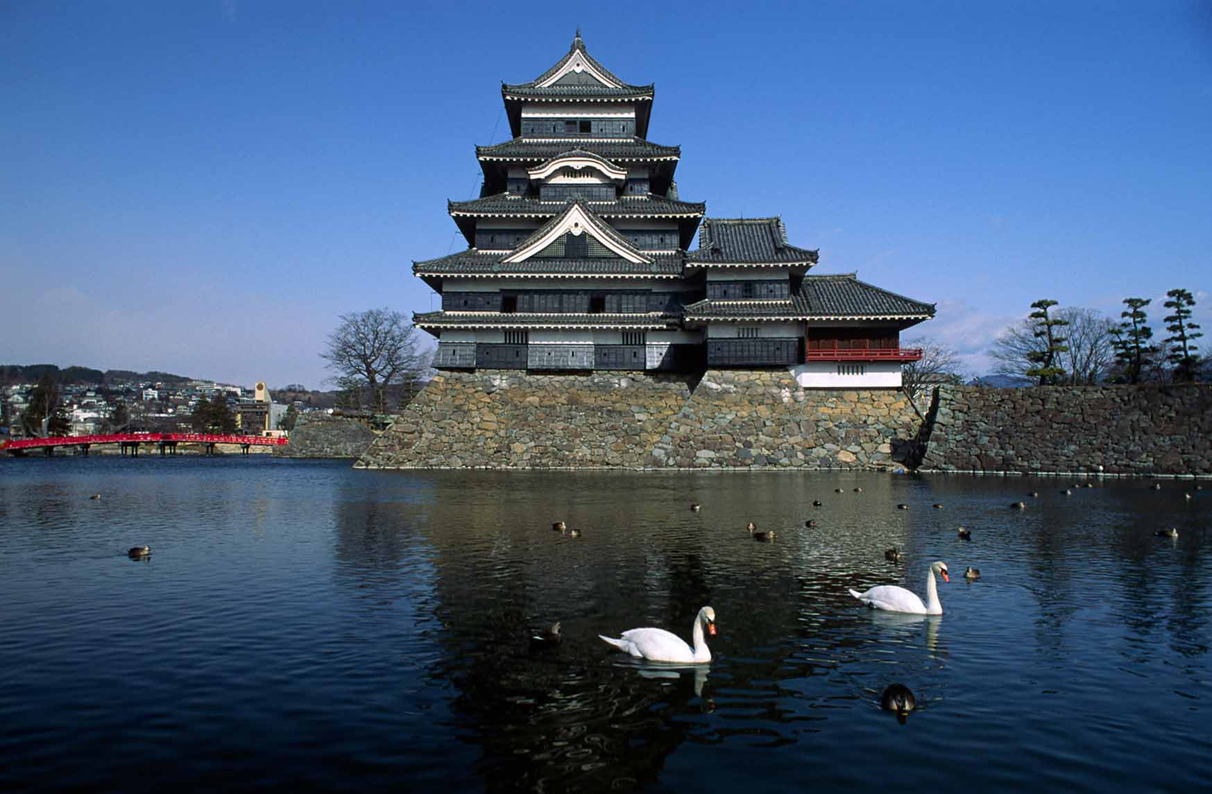 Matsumoto Castle Japan with two white swans