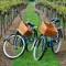 Best Destinations For Wine Tasting