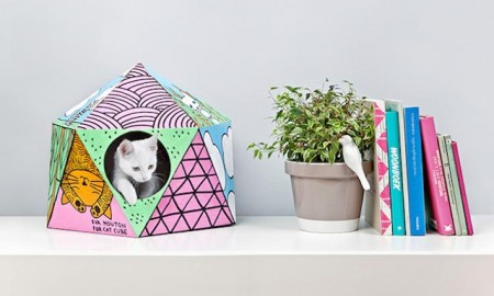 cat cube Delphine Courier