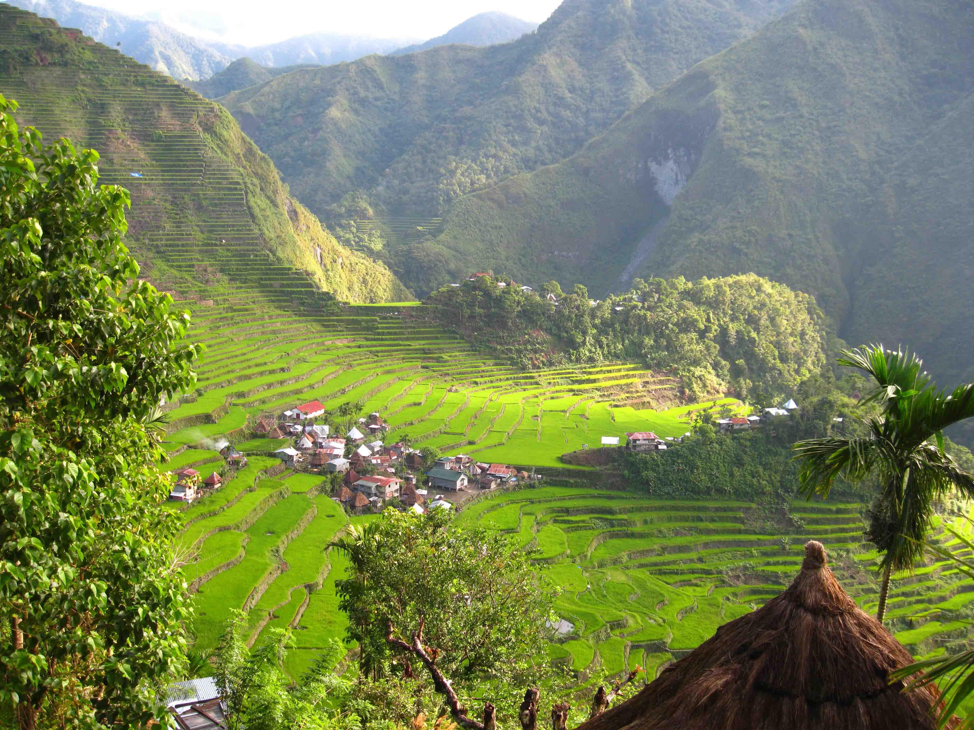 terraces Mayoyao Banaue Philippines