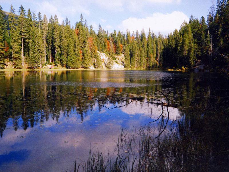 Durmitor mountain river