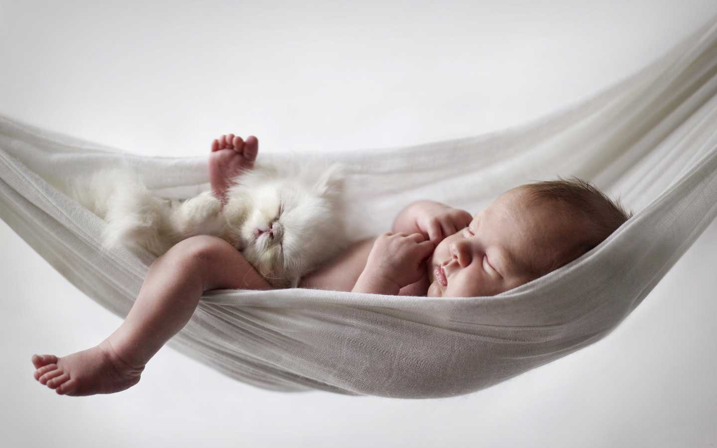sleeping-baby-and-cat-on-a-hammock
