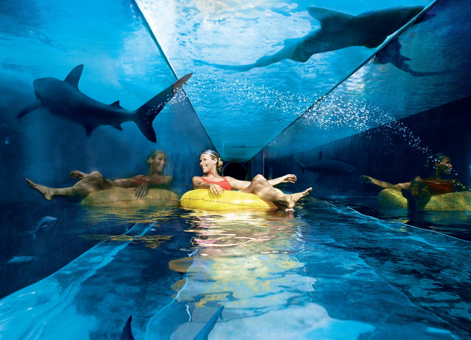 Underwater slide Serpent Slide, Bahamas best water park in the world 2