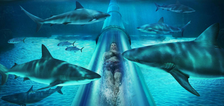 Underwater slide Serpent Slide, Bahamas best water park in the world