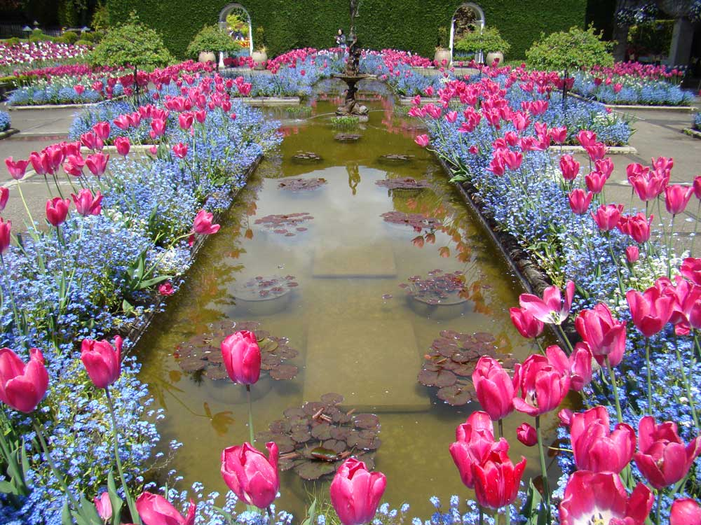 Butchart-Gardens,-Canada-3