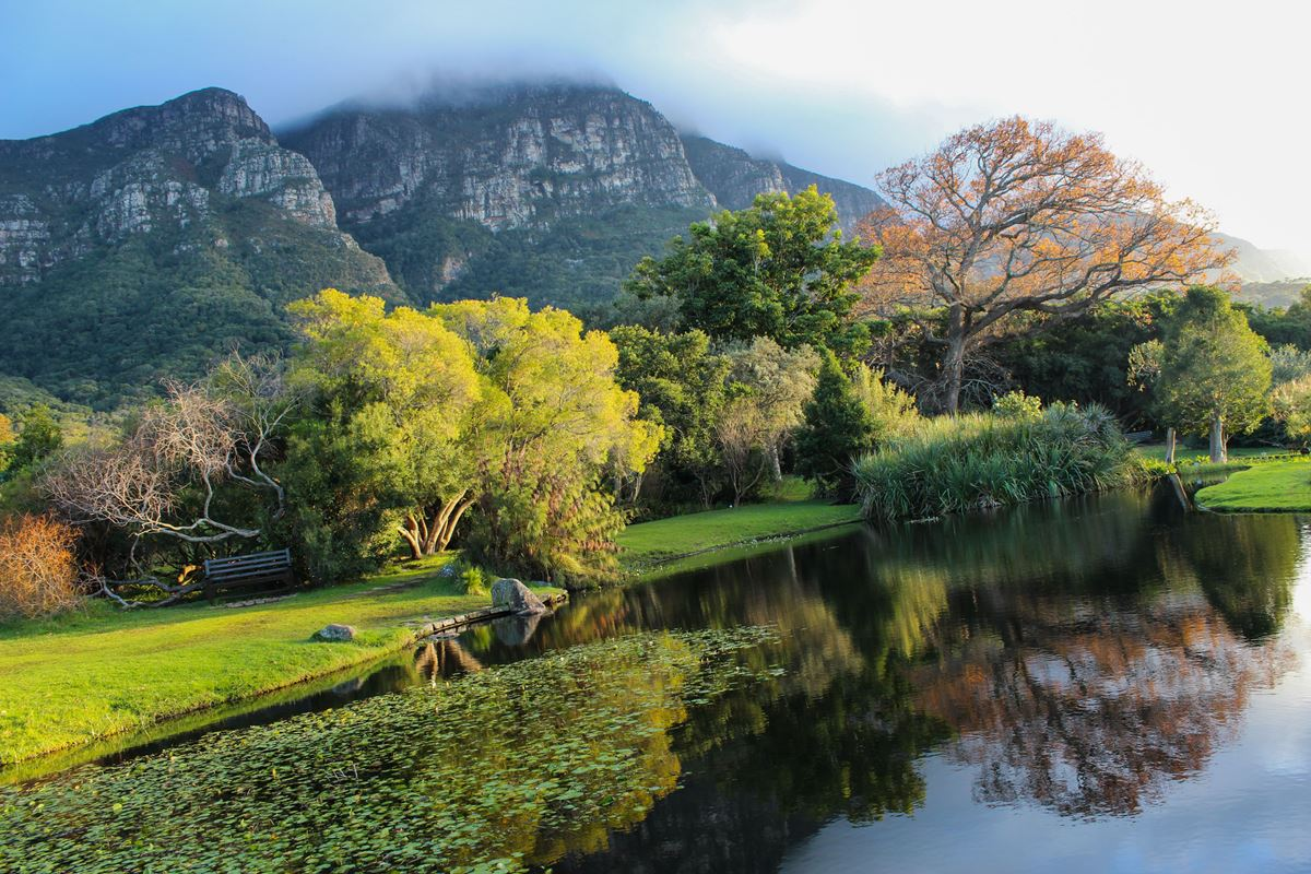 Kirstenbosch National Botanical Garden 3