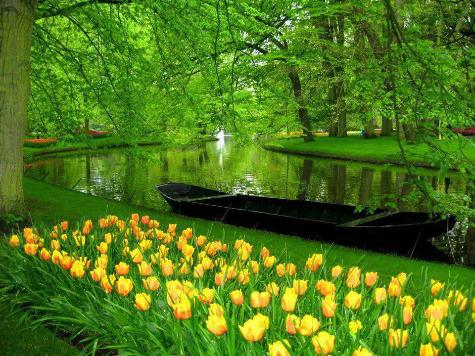The Garden Keukenhof, Netherlands