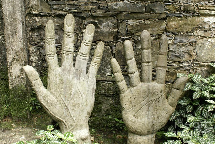 right-hand-las-pozas-mexico-john-mitchell