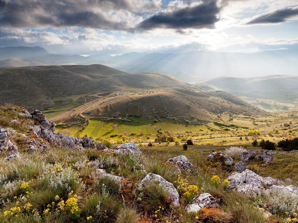 wildflowers-mountain-italy Abruzzo National Park