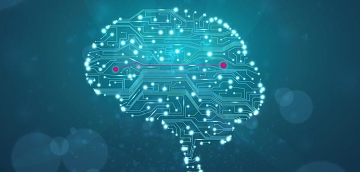 Virtual animals in virtual minds, digital minds