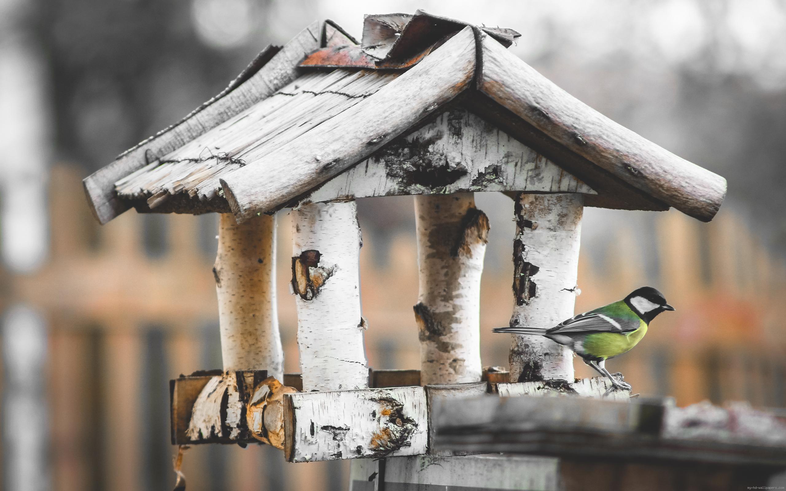 handmade-diy-wooden-bird-houses