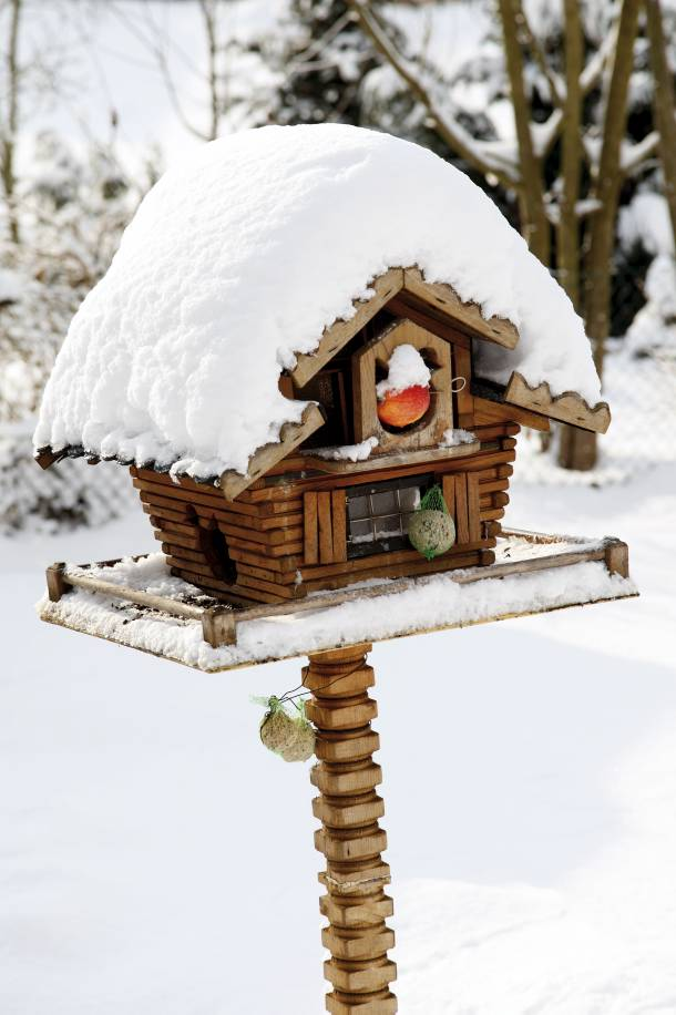 small-chaffinch-bird-houses