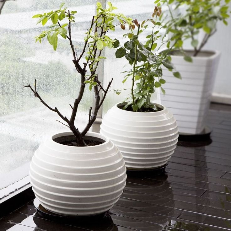 4-window-sill-ball-vase-in-white-decorative-floor-vases-in-contemporary-design
