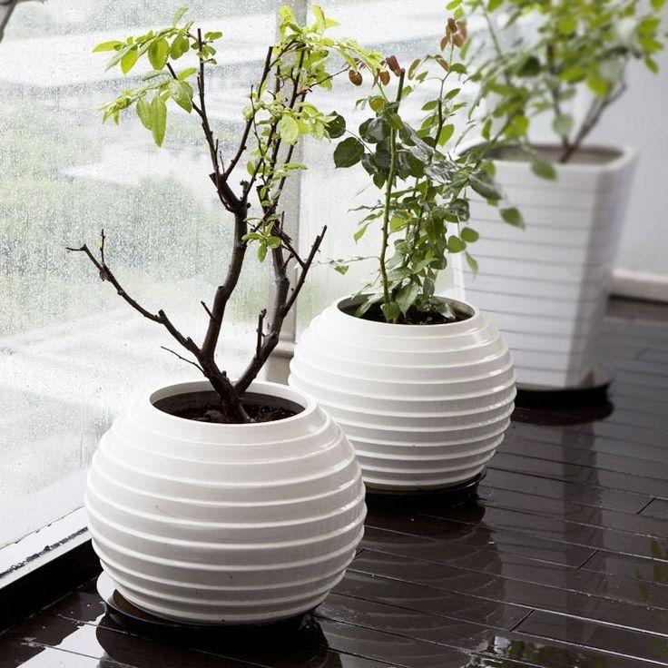 4-window-sill-ball-vase-in-white-decorative-floor-vases-in-contemporary-design