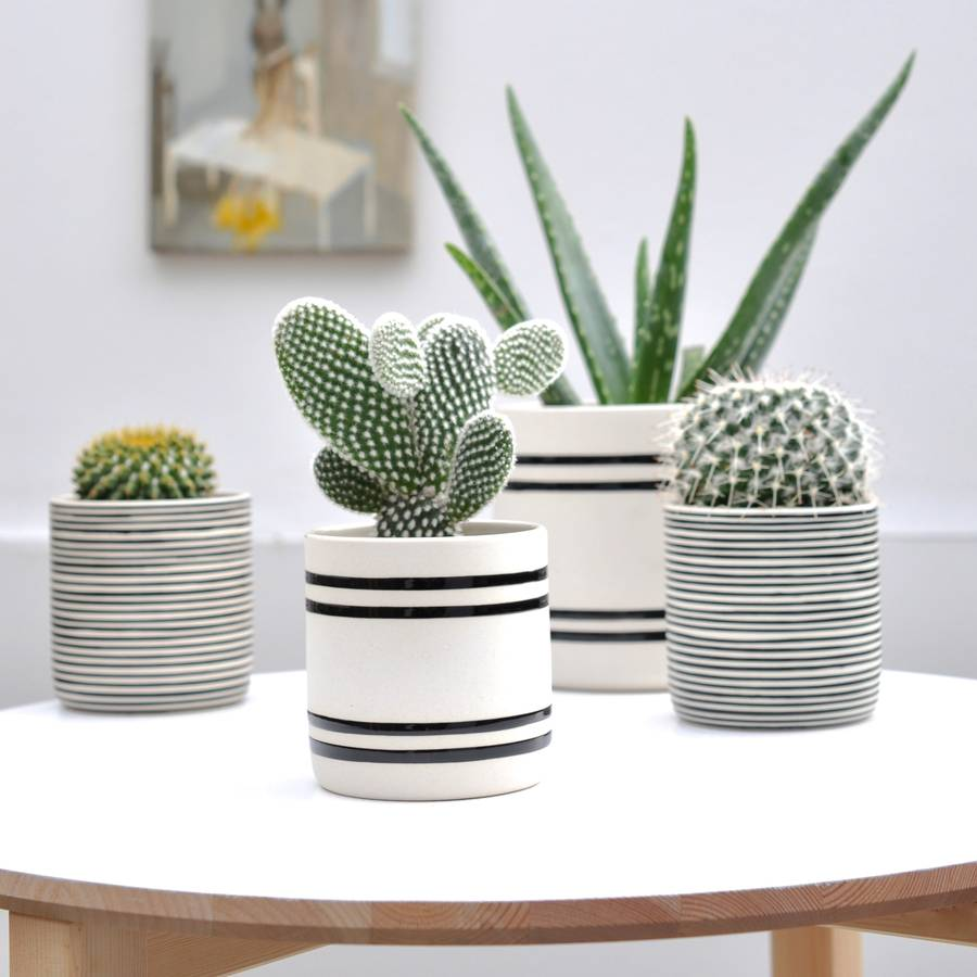 handmade-pot-stoneware-white-modern-succulent-cacti-planters