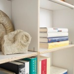 The Bookcase In All Versions
