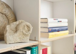 f-the-bookshelf-in-all-versions
