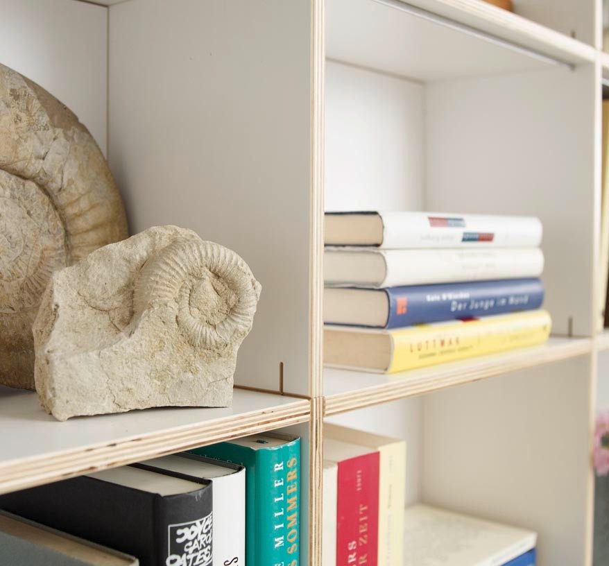 f-the-bookshelf-in-all-versions