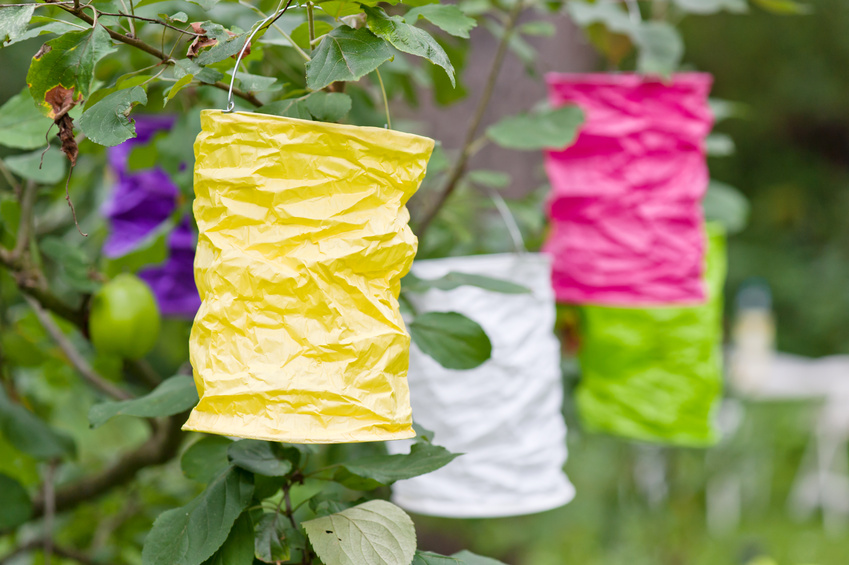 Paper handmade colorful lamps yellow pink green garden Paper lantern