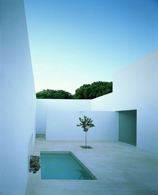 Contemporary minimalist patio landscape in the minimalist style