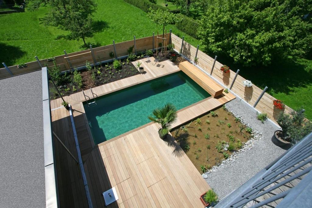 Garden plants landscaping Pool in the garden, green plants