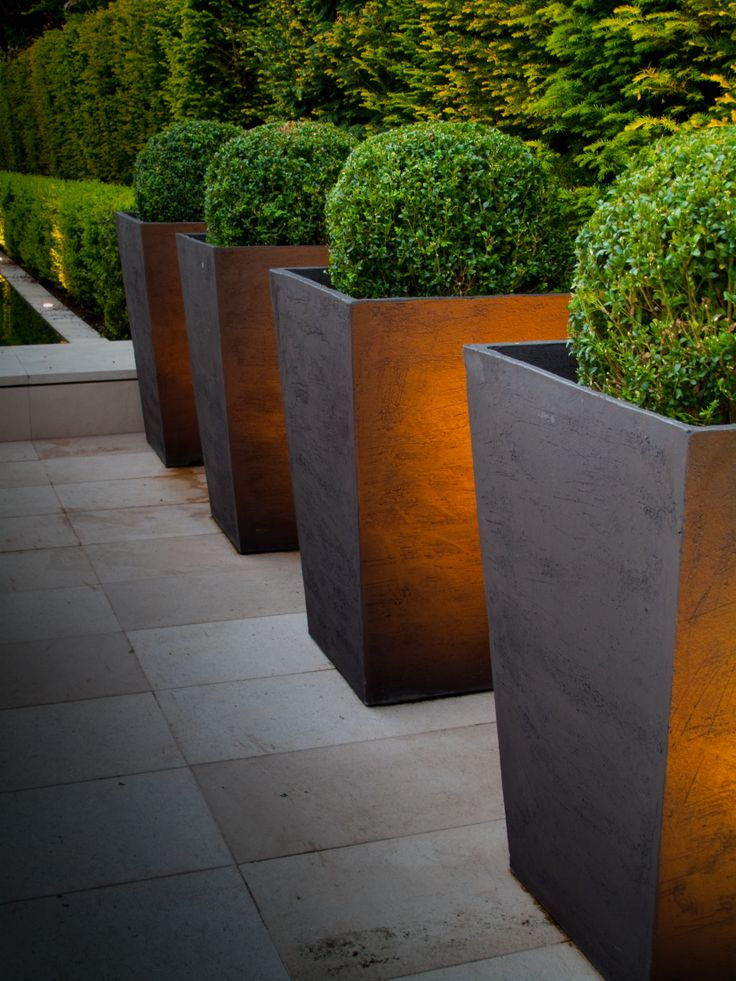 Modern garden design landscape in the minimalist style