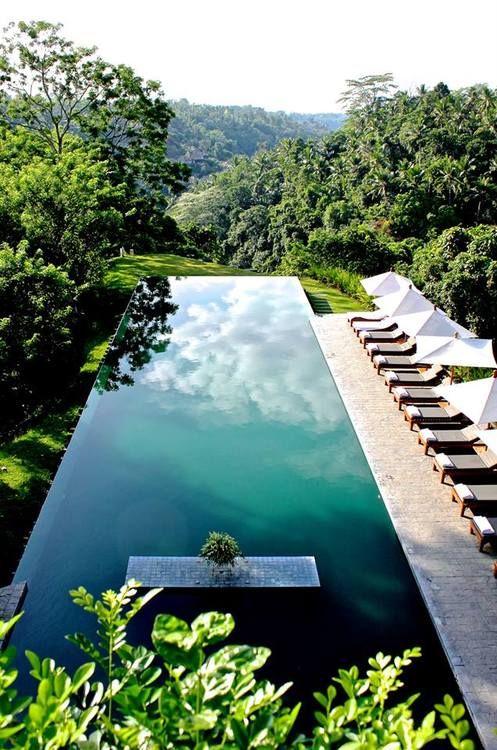 Modern luxury swimming pool landscape in the minimalist style