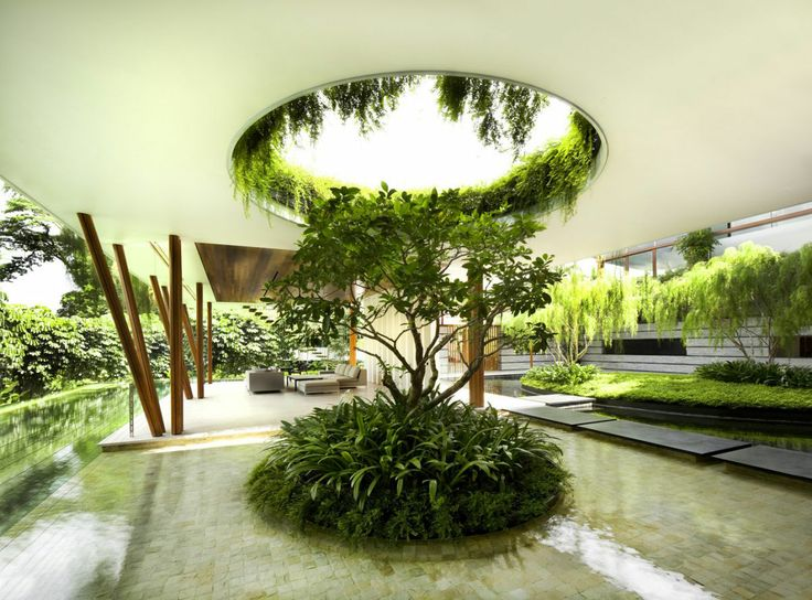 Wall greening in the dream garden landscape in the minimalist style