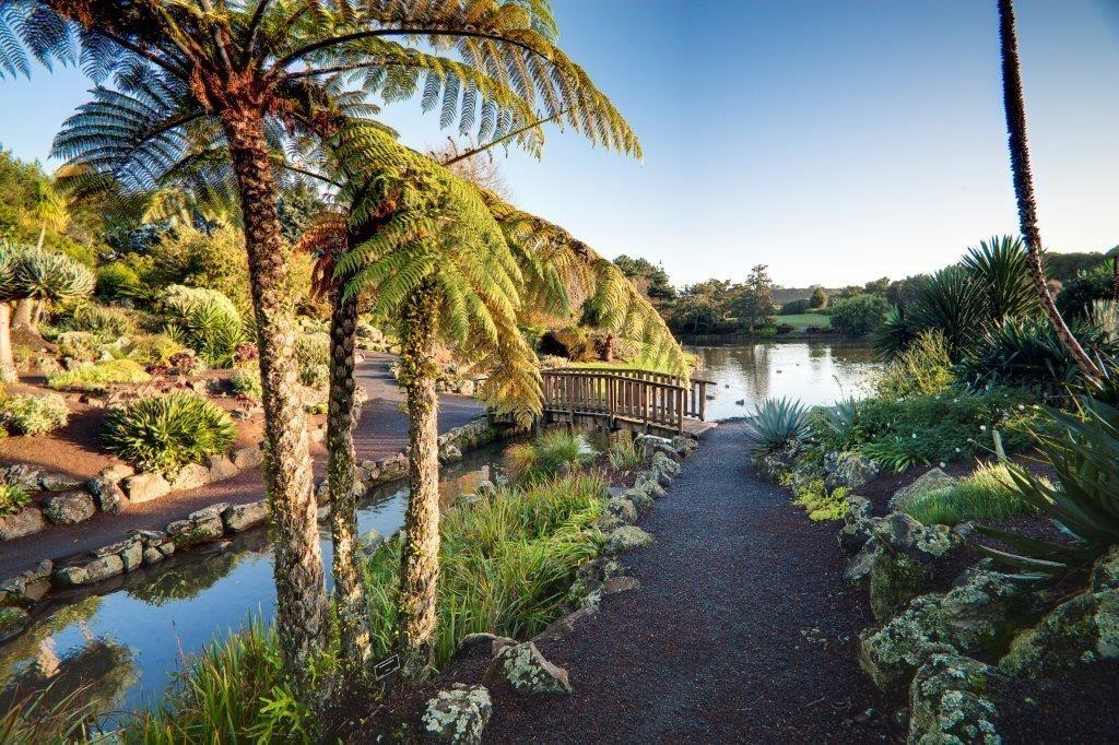 Auckland Botanic Gardens national botanic garden palm bridge lake path rocks green
