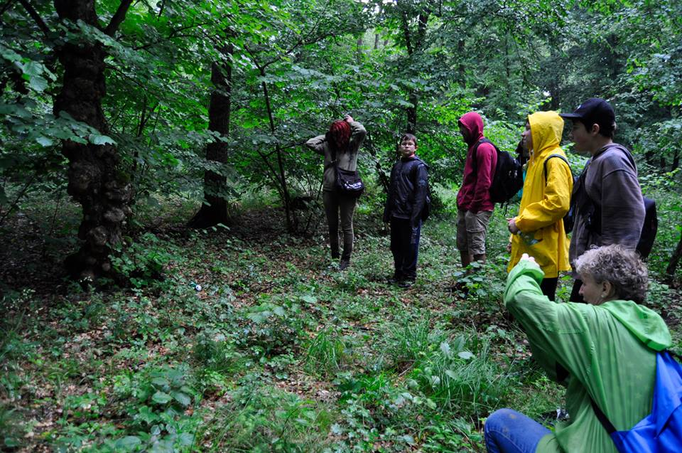 Discovering Hoia Baciu Forest Romania hoia-baciu-project-vineri