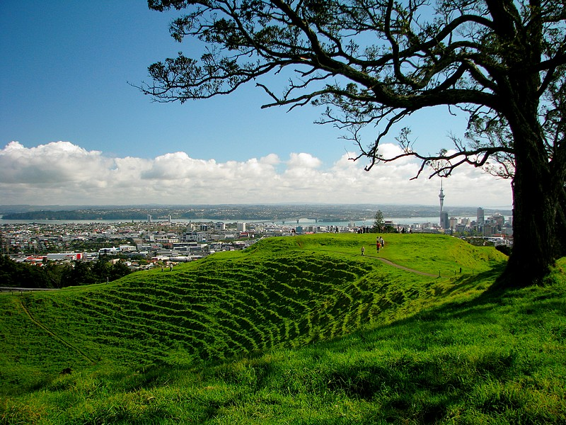 Mount Eden Auckland Heritage Festival Green Village People City View Grass