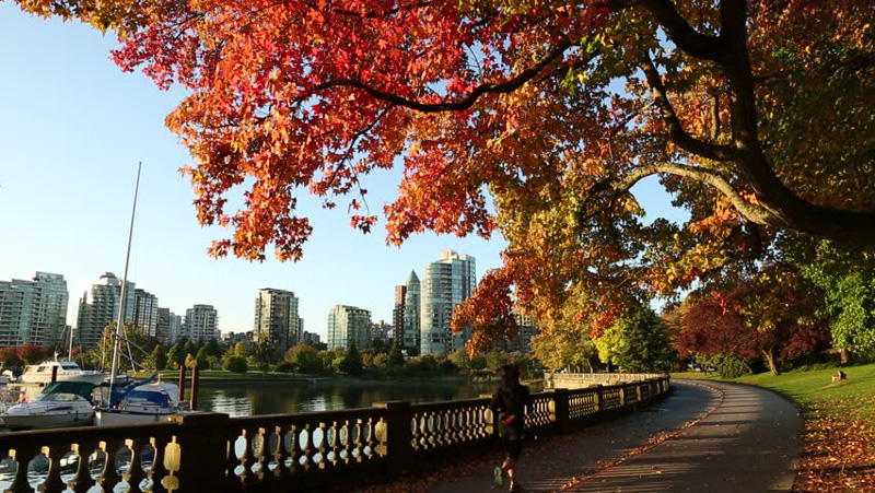 Canada,-Vancouver-fall-landscape-stanley-park,-autumn-seawall-an-early-morning-jogger-downtown