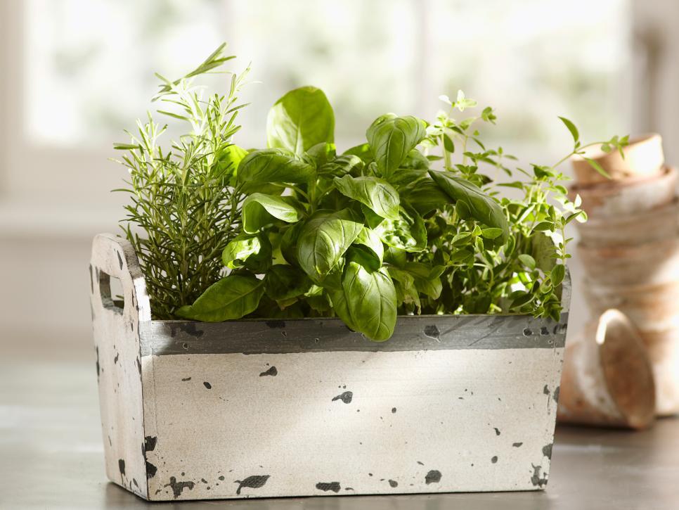 Indoor Herbs Garden Ideas Pretend Magazine