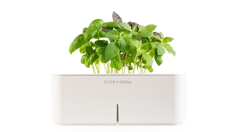 Click-and-Grow-Herbs-INdoor-growing-herbs-indoors-herb-garden-window-herb-garden-kitchen-herb-garden-growing-herbs-herb-planter-indoor