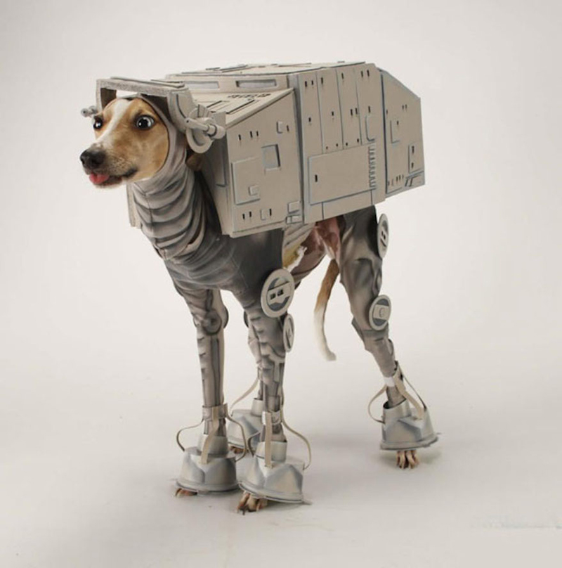 Funny-Star-Wars-Pet-Halloween-Costume-Halloween-costume- & Halloween Costume Ideas 2017 - PRE-TEND Be curious - Travel