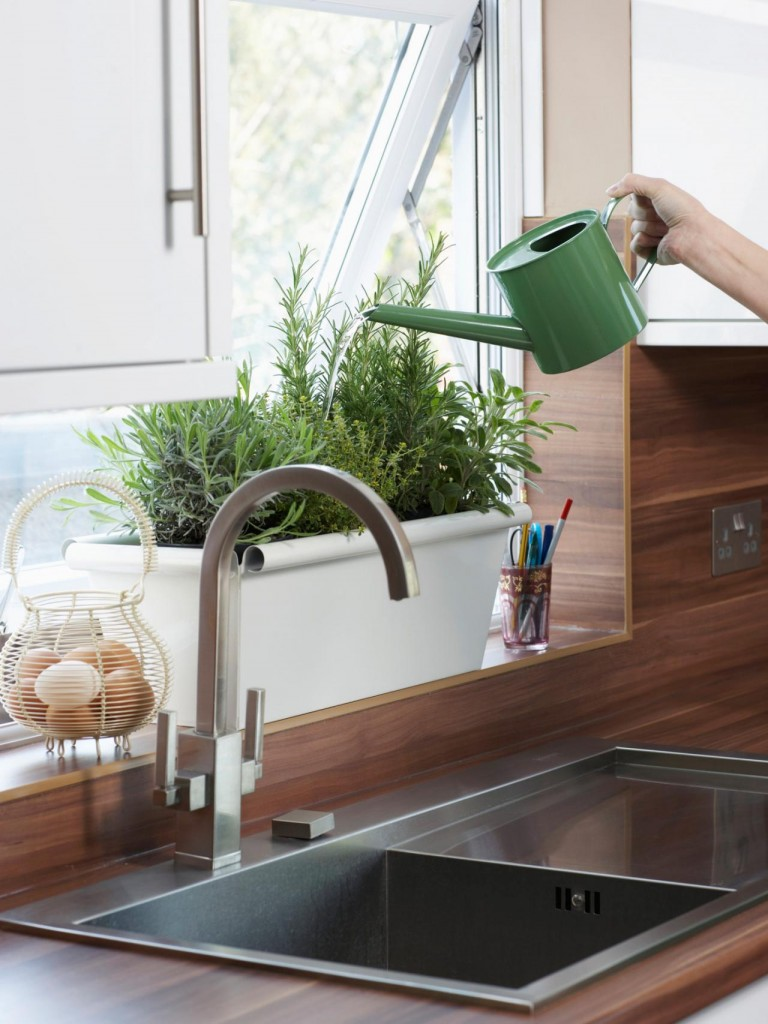 Home Growing Herbs In KItchen Green Home growing herbs indoors herb garden window herb garden kitchen herb garden growing herbs herb planter indoor